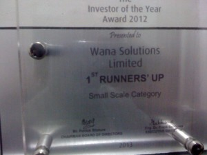 WANA WINNER as Investor of the Year 2012